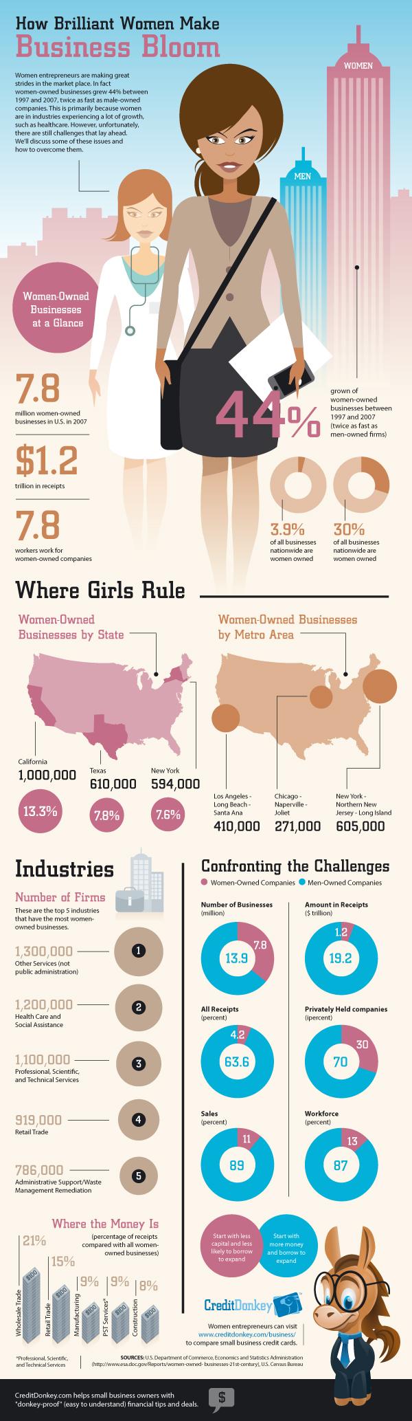 Female Entrepreneurs Infographic